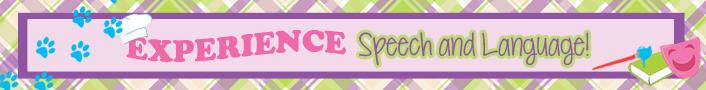 CSL banner TpT Store